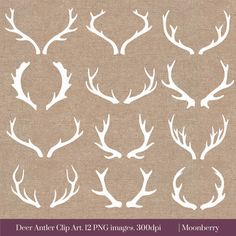 DEER ANTLER CLIP ART  This clip art pack features 12 deer antler elements perfect for scrapbooking, cards, web design, graphic design, invitations, handmade craft items, printed paper items and so much more!  ✽ YOU WILL RECEIVE - 12 images approximately 6(1800px) at the widest point - high quality 300dpi PNG files with transparent background - 1 burlap & 1 chalkboard background 12x12 (300dpi) JPEG - watermark will not appear on purchased files  ✽ INSTANT DOWNLOAD Once the payment is…