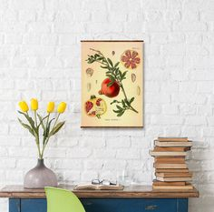 Pomegranate Botanical Canvas 16x22 Punica