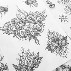 I have some flash designs available and space next week. Swipe if you wanna have a closer look at them. Cobra Tattoo, Mädchen Tattoo, Tattoo Skin, Sternum Tattoo, Tattoo Outline, Snake Tattoo, Piercing Tattoo, Piercings, Blackwork