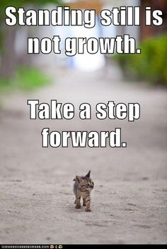 Growth Mindset Memes: English: Standing still is not growth. Take a step forward.