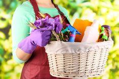 Ако избягвате силните препарати, искате да живеете здравословно и природосъобразно, тогава тези 8 идеи как да си направите сами почистващи препарати ще ви бъдат от полза. Вижте 8-те рецепти за домашни препарати. - Rozali.com