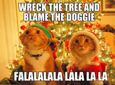 Wreck the tree and...