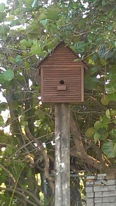 Hubby just put up my bird house.