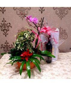 Flower Arrangements, Gift Wrapping, Gifts, Interiors, Wine, Plant, Gift Wrapping Paper, Floral Arrangements, Presents