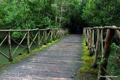 Gentes e Locais/Não há pontes entre nós.....