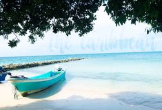 What to do in Santa Marta, Colombia — Listen To The Wild Caribbean Culture, Caribbean Sea, Oasis, Tayrona National Park, City Pride, Santa Marta, Best Sunset, Lost City, Beautiful Sunrise