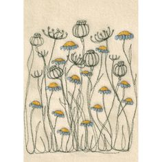 Cream poppies and daisies postcards