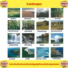 different types of landscapes - learning basic English