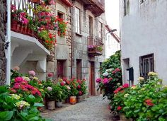 Trancoso Vila Medieval, Beautiful World, Beautiful Places, Family Roots, Famous Places, Travel News, Natural Wonders, Portuguese, Flower Power