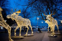 From The local Sweden: This weekend (22/23 November 2014), 710,708 Christmas lights were lit throughout Stockholm. Time to get in the spirit!