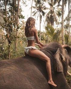 Welcome the jungle... 🌿 #elephant #bali