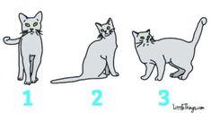 Cat language: A Cat's Face Secret Language, Quelque Chose, Entertainment, Cat Face, Thinking Of You, Disney Characters, Fictional Characters, Pets, Unique