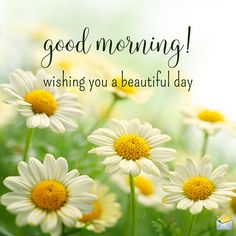 good morning wishes ~ good morning quotes ` good morning ` good morning quotes for him ` good morning quotes inspirational ` good morning wishes ` good morning beautiful ` good morning quotes funny ` good morning images Good Morning Monday Images, Latest Good Morning Images, Good Morning Images Flowers, Good Morning Inspiration, Good Morning Quotes For Him, Good Morning Picture, Good Morning Sunshine, Good Morning Messages, Good Morning Greetings