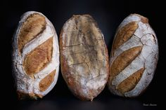 welcome to my white bread world A buttermilk poolish bread with a hint of freshly milled, fine sifted rye flour. Rye Flour, White Bread, Pretty Good, Bread Recipes, Bakery, Gluten, Bread, Bread Store