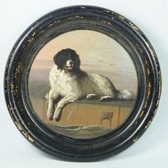 Early Victorian Newfoundland Dog Papier Mache Plate Tray After Landseer A distinguished member of the Humane Society Circa 1850 Country Paintings, Dog Paintings, Landseer Dog, English Dogs, Dog Portraits, Humane Society, Dog Art, Mans Best Friend, Decoration