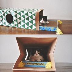 2 in 1 Cat Kitty Scratching Post Cardboard Scratcher Lounge with Catnip and Hiding Sneaking Watching Cat Paper Tunnel Tube Toy ** Find out more at the image web link. (This is an affiliate link). Scratching Post, Toy Chest, Storage Chest, Tube, Lounge, Kitty, Cats, Paper, Link
