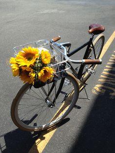 https://flic.kr/p/fLaQvb | my bike . silver lake . los angeles | www.rossreyes.com