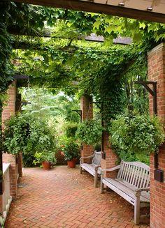 Backyard Patio Designs, Small Backyard Landscaping, Pergola Patio, Patio Ideas, Landscaping Ideas, Backyard Ideas, Outdoor Rooms, Outdoor Gardens, Outdoor Living