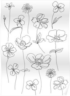 'Botanical floral illustration - Botanicals White' Poster by TheColourStudy Line Art Flowers, Line Flower, Flower Art, Simple Line Drawings, Easy Drawings, Drawing Male Hair, Flower Sketches, Flower Drawings, Drawing Flowers
