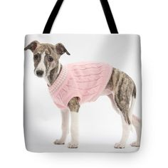 Brindle-and-white Whippet Pup Tote Bag by Mark Taylor