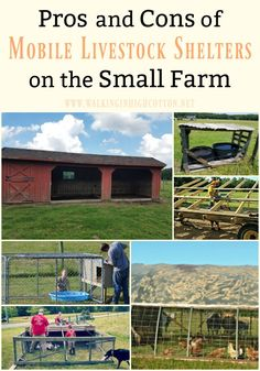 The Pros and Cons of using Mobile Livestock Shelters on the Small Farm ... via Walking in High Cotton Living Off The Land, Living At Home, Frugal Living, Raising Goats, Modern Homesteading, Backyard Vegetable Gardens, Keeping Chickens, Planting Vegetables, Small Farm