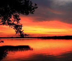 Lake Ariana Auburdale