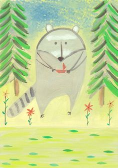 raccoon!!