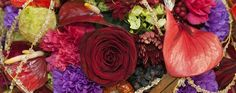 IPM ESSEN - sejem floristike, 22. - 25. januar 2013
