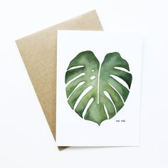 Bildergebnis für monstera leaf