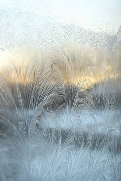 Waking up after a cold night, to beautiful frosted patterns on the windows.