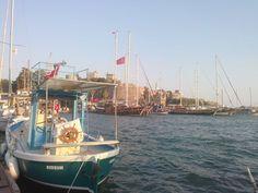 Marina and castle