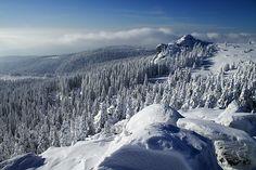 bayern im winter entdecken - Google Search