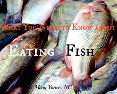 What You Need to Know About Eating Fish