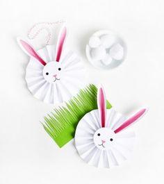 1_bunny_rosette