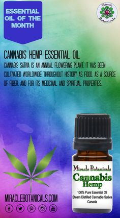 Cannabis sativa is an annual flowering plant. It has been cultivated worldwide throughout history as food, as a source of fiber, for its medicinal and spiritual properties, as well as for recreational use. #cannabis #cannabiscures #hemp #cannabisoil #hempoil #holistichealth #reiki #aromatherapy #essentialoil #holistichealing #naturalhealing #holisticliving #wellness #consciousliving #energyhealing #energywork #chakrabalancing #meditation #mantra