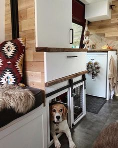 One of my favourite bits of our van? The dogs sliding barn door! It almost didn't happen as Will wasn't convinced the design would work but… Van Conversion Interior, Camper Van Conversion Diy, Van Interior, Sprinter Van Conversion, Motorhome, Bus Living, Caravan Living, Caravan Home, Caravan Decor