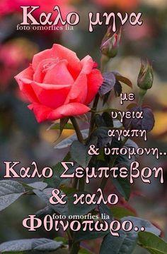 Mina, Greek Quotes, Good Morning, Spirituality, Positivity, Rose, Flowers, Plants, Logos