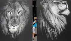 Protesto contra a caça aos leões