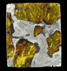 Meteorite Slice Var. Stony Iron, pallasite