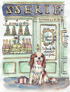 Chevalier King Charles at a Patisserie | Cute picture to frame!