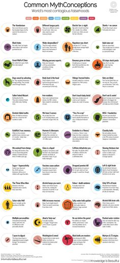 Common MythConceptions: World's Most Contagious Falsehoods #infographic #Myths #Misconceptions #infografía