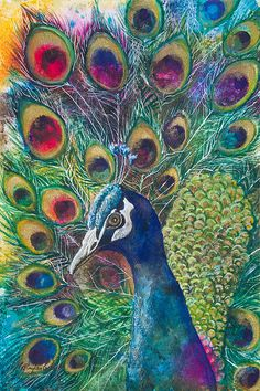 Pavão- Peacock Mixed Media - Golden Peacock by Patricia Allingham Carlson Peacock Wall Art, Peacock Painting, Watercolor Peacock, Peacock Print, Peacock Canvas, Peacock Bedroom, Peacock Decor, Peacock Images, Peacock Pictures