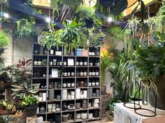 The shop address is Lordship Lane with the actual entrance on Frogley Road. The nearest stations are North Dulwich and East Dulwich Mini Milk Bottles, Dulwich Picture Gallery, Glass Picture Frames, Forest Plants, Tin Candles, Brick Building, Covent Garden, Shop Interiors, Lush Green