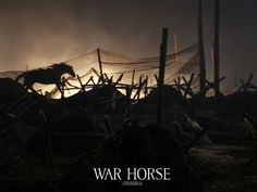 War Horse is a 2011 epic war film adaptation of War Horse, a 1982 children's novel set before and during World War I, by British author Michael Morpurgo, and the 2007 stage adaptation of the same name. It was directed by Steven Spielberg. Steven Spielberg Movies, Horse Movies, Pony Breeds, Michael Morpurgo, Horse Wallpaper, Horse Galloping, No Mans Land, War Film, American War