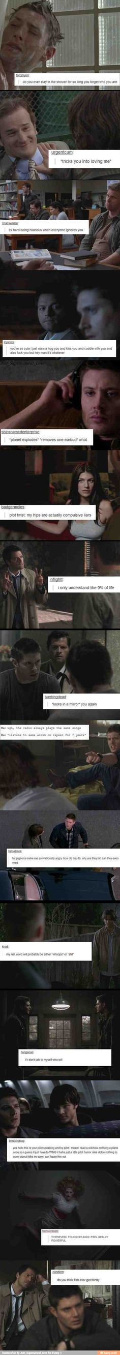 Supernatural + Tumblr Posts ❤️ / iFunny :)