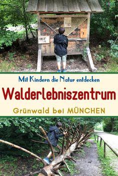 Das Walderlebniszentrum liegt im idyllischen Grünwalder Forst südlich von München. Der Walderlebnispfad mit vielen interessanten und interaktiven Stationen lädt zum Entlangspazieren ein. Der Weg ist 2,8km lang, kann aber auch abgekürzt werden. Er ist für Kinderwagen geeignet. #walderlebniszentrum #walderlebnis #waldspaziergang #walderlebnispfad #erlebnisweg #walderlebnisweg #münchenmitkindern #gruenwaldbeimünchen #ausflugszielemünchen #erlebnispfadmünchen School Holidays, Holiday Program, Amusement Parks, Playground, Families