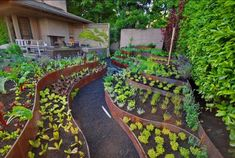 Edible Landscaping With Copper Slopped Beds The Convenient Edible Landscaping