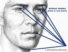 Shading explained: Portrait Art Basics - lessons on drawing the face Drawing Lessons, Drawing Techniques, Drawing Tips, Shading Drawing, Realistic Drawings, Cartoon Drawings, Easy Drawings, Portrait Art, Portraits