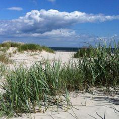 The lovely beach on Österlen/ Sweden