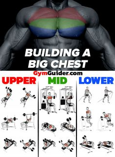 How To Create Monster Muscle Mass For Your Chest In Just 28 Days If you're boring and don't want to experience truly massive gains, feel free to rep through endless standard bench press sets until your bac Gym Workout Tips, Weight Training Workouts, Gym Workouts For Men, Mens Fitness Workouts, Back Workouts, Push Day Workout, Muscle Gain Workout, Swimming Workouts, Swimming Tips